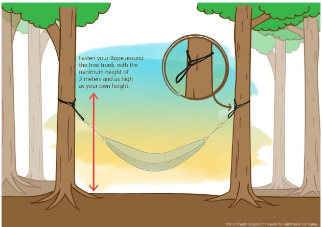 How to set up hammock with tree straps?
